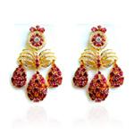 earrings_pro